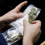 ▷ Best Where To Get Weed In Calgary | AB | Canada