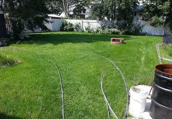 Is Weed Killer Effective Before Winter In Edmonton