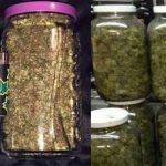 ▷ Online Weed Dealers In Mississauga | ON | CA