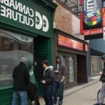 ▷ Online How To Buy Weed In Hamilton Ontario | On